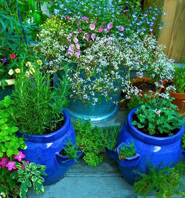container gardening - start