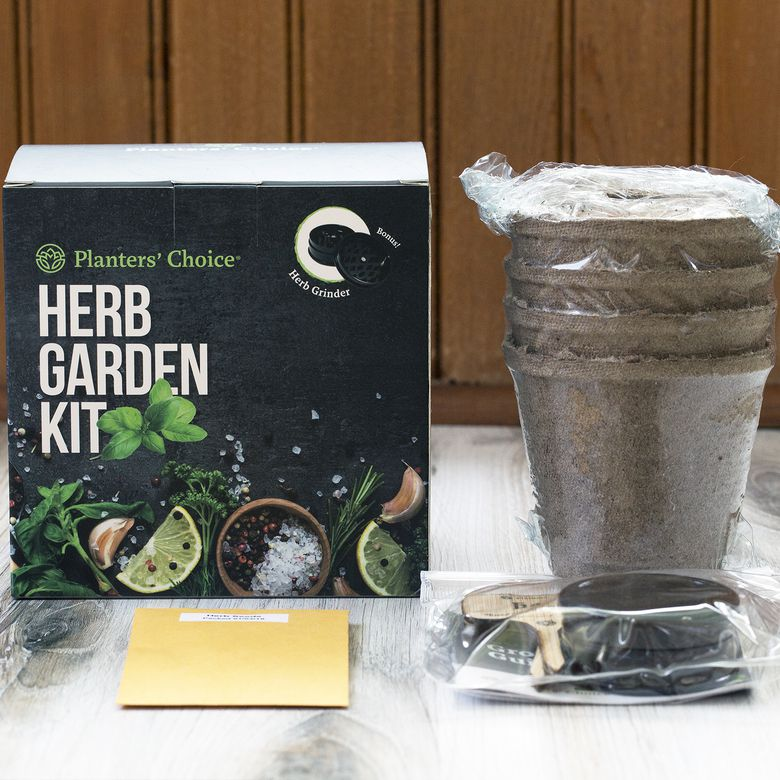 Planters Choice Organic Herb Growing Kit Review Affordable And Easy