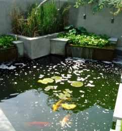building a koi pond diagram [ 1193 x 1564 Pixel ]