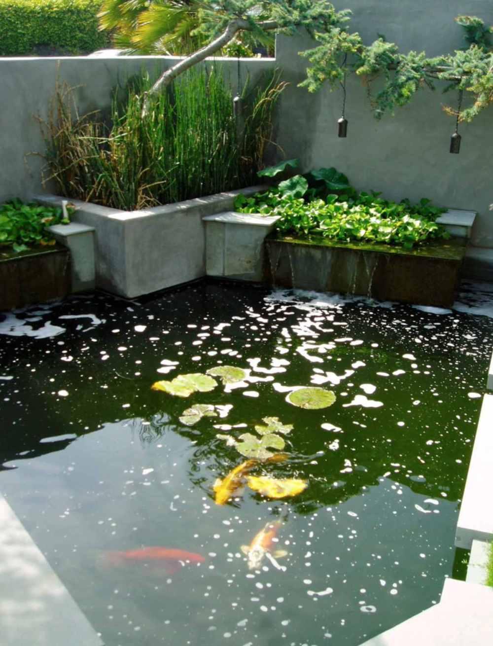 medium resolution of building a koi pond diagram