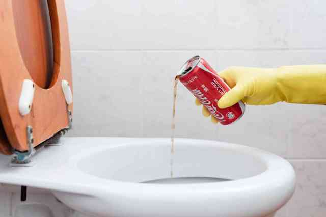 30 Weird Toilet Cleaning Tips and Fixes