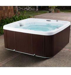 coronado lifesmart hot tub [ 1000 x 1000 Pixel ]