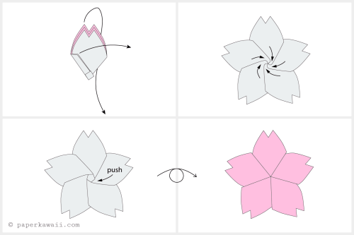 small resolution of diagram of the cherry