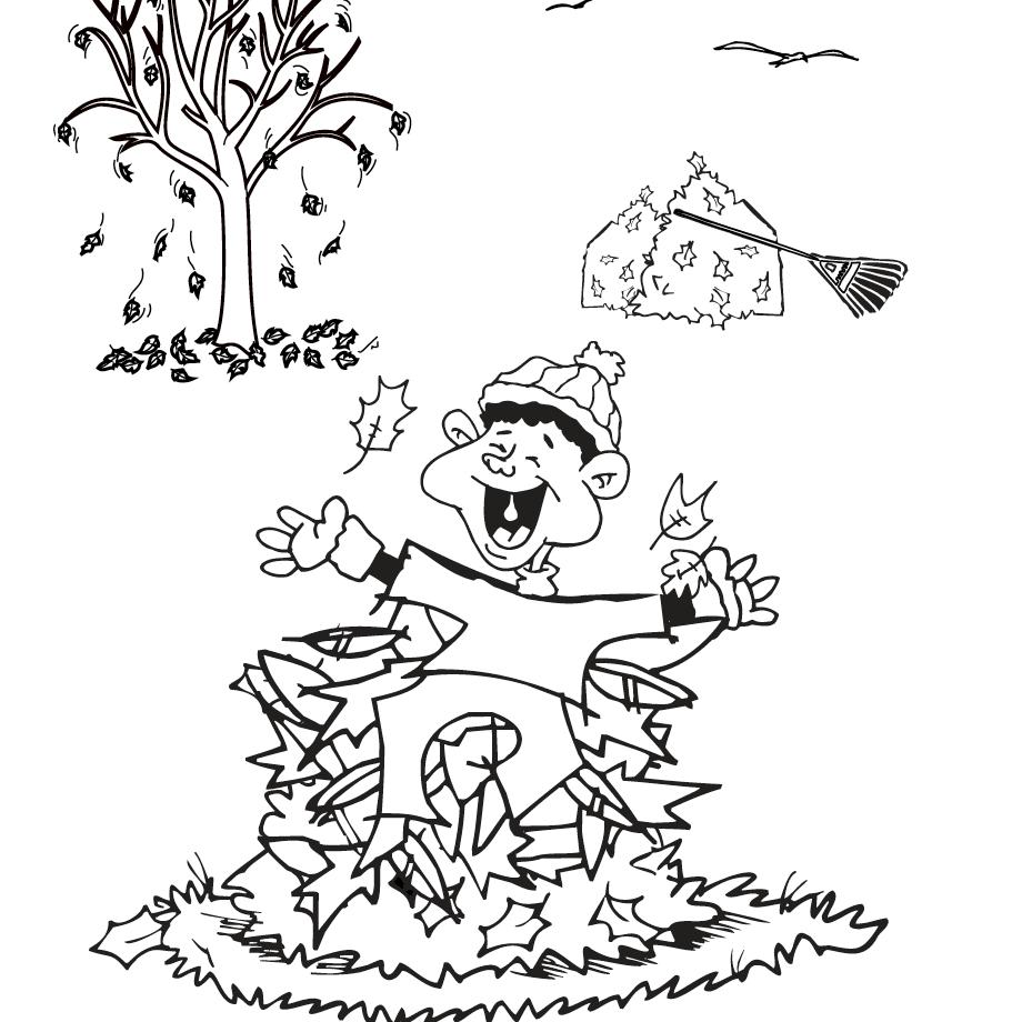 medium resolution of fall