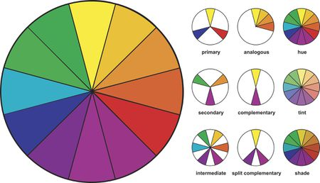 color combinations for diagram wiring in a light switch how to use wheel find combo infographic