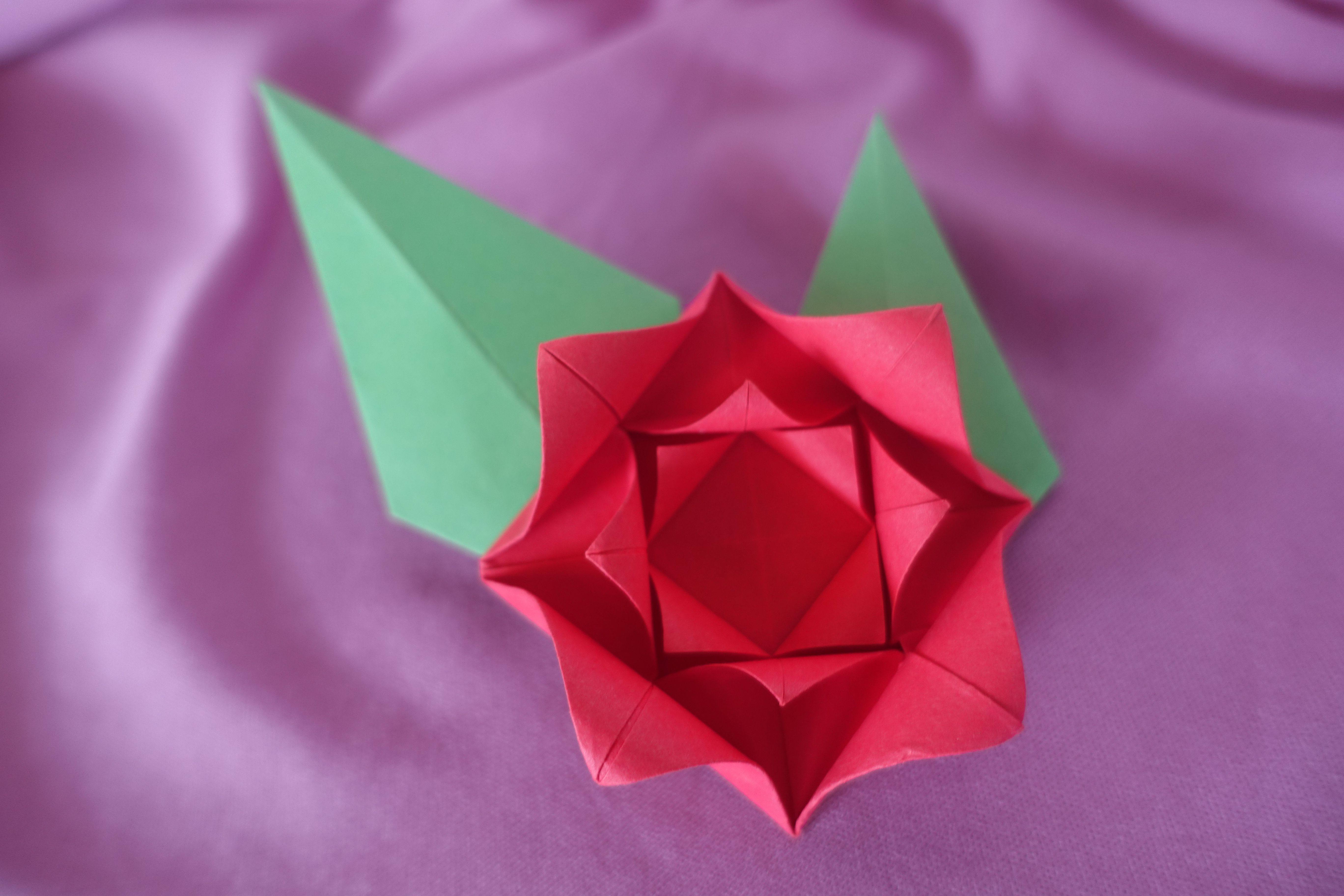 star flower origami diagram what is the use of venn make an easy rose