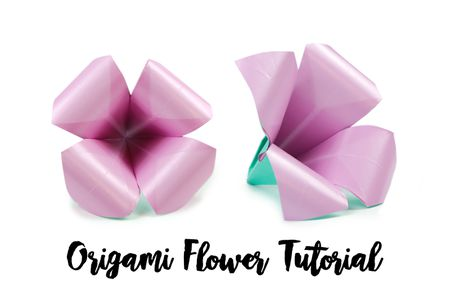 origami flower diagram in english 3 wire alternator wiring make an easy lily decorate with flowers