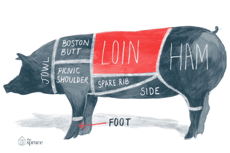 hight resolution of pig body diagram