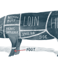 pig diagram meat [ 1500 x 1000 Pixel ]