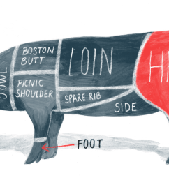 ham bone diagram [ 1500 x 1000 Pixel ]