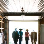 Best Size For Horse Stables