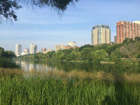 Veteran's Park Lagoon, calm before the dragons arrive.
