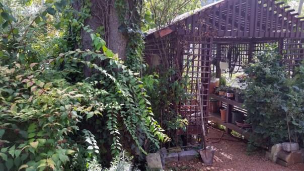 Sanger House Gardens (4) sd