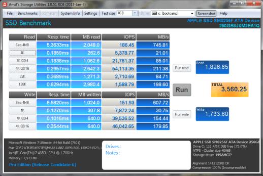 APPLE SSD SM0256F Anvil
