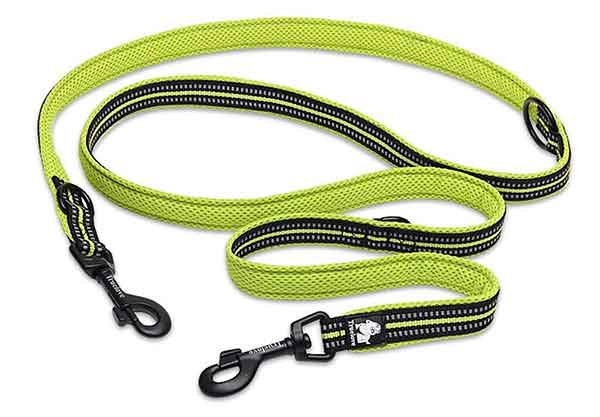Petcomer Multi functional Dog lead