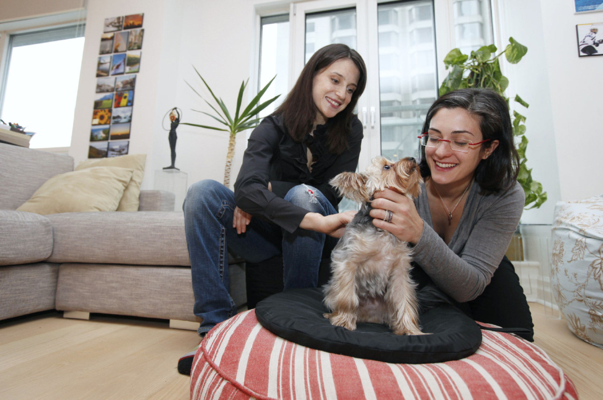 Pet adoption Why adopting a pet requires an interview application  Toronto Star
