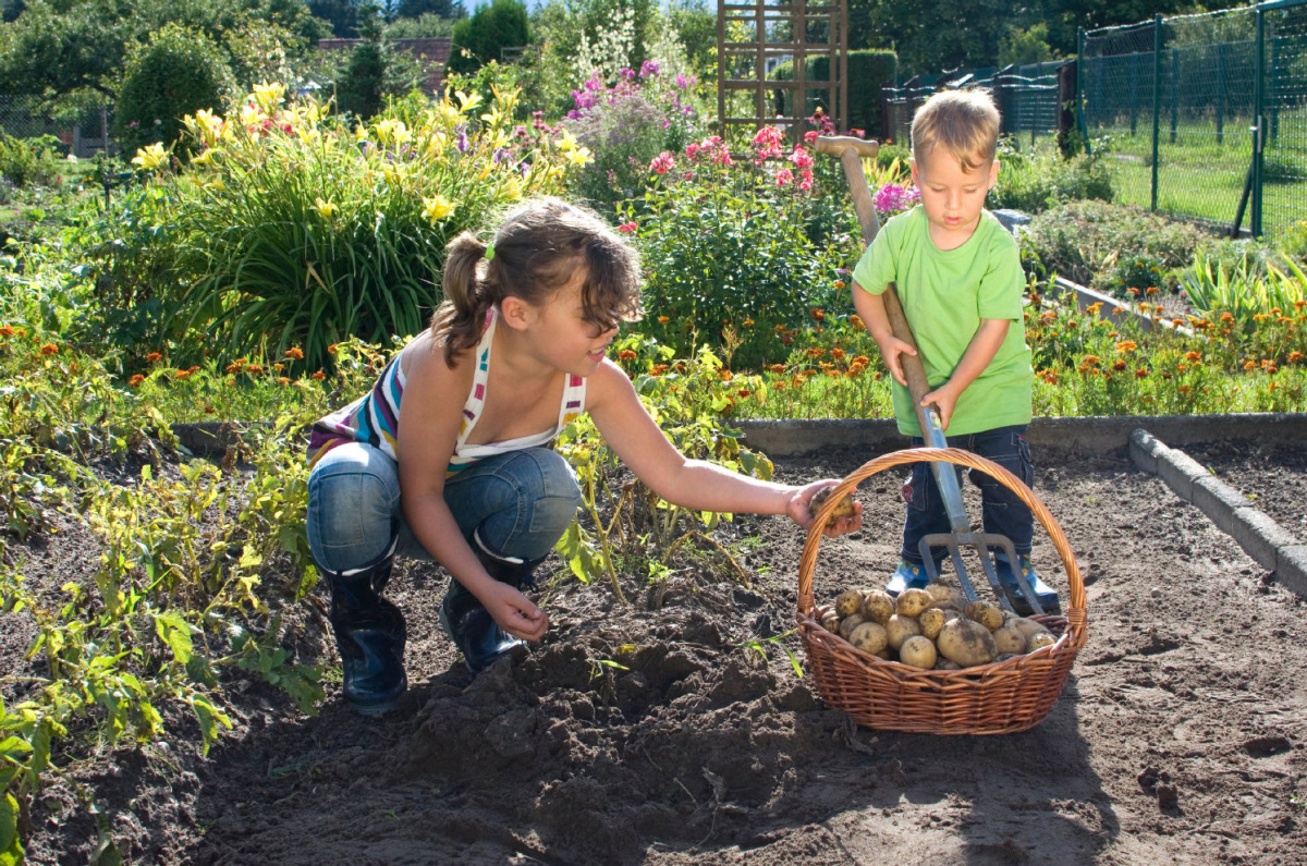 You Can Raise Farm To Table Kids Even If You Don T Live