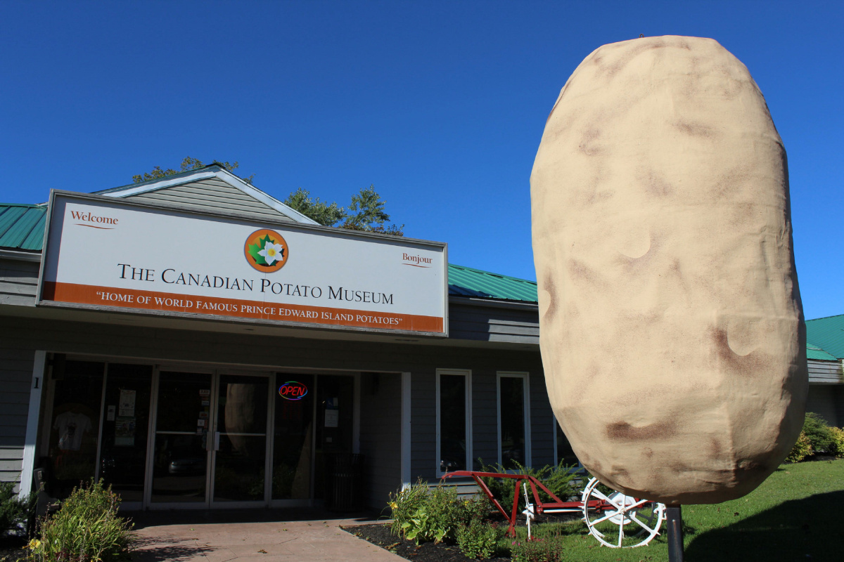 Spuds shine at Canadian Potato Museum  The Star