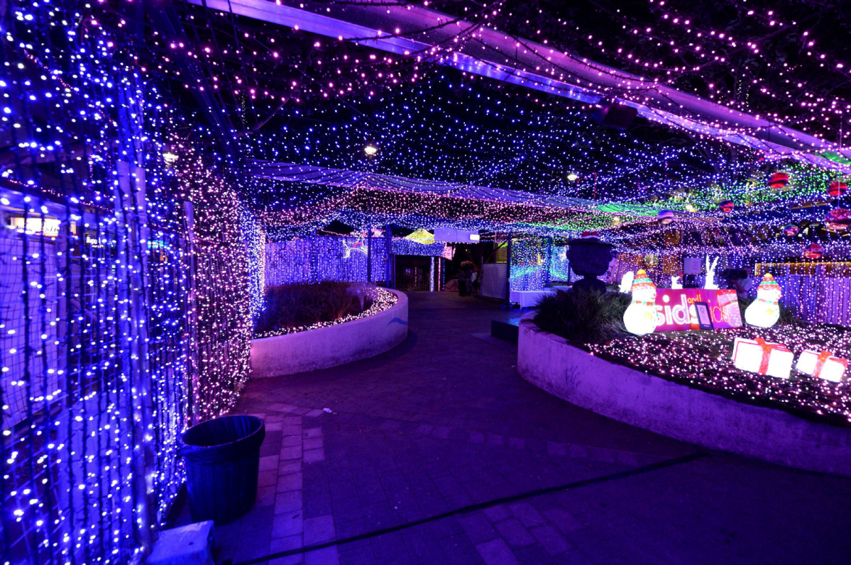 hight resolution of australian lawyer sets world record with christmas lights
