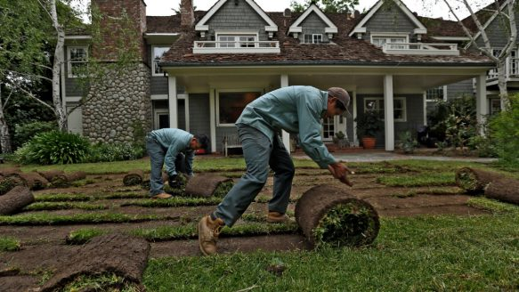 Workers remove grass from the sprawling lawn at Arcadia city councilman Tom Beck's home.
