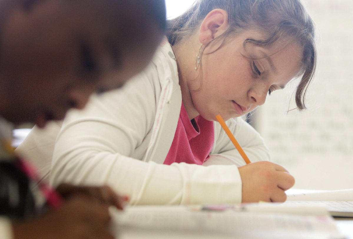 Ontario Standardized Elementary And High School Tests To