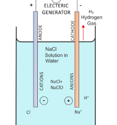 diagram showing negatively charged chlorine ions moving towards the anode and positively charged sodium ions [ 830 x 1181 Pixel ]