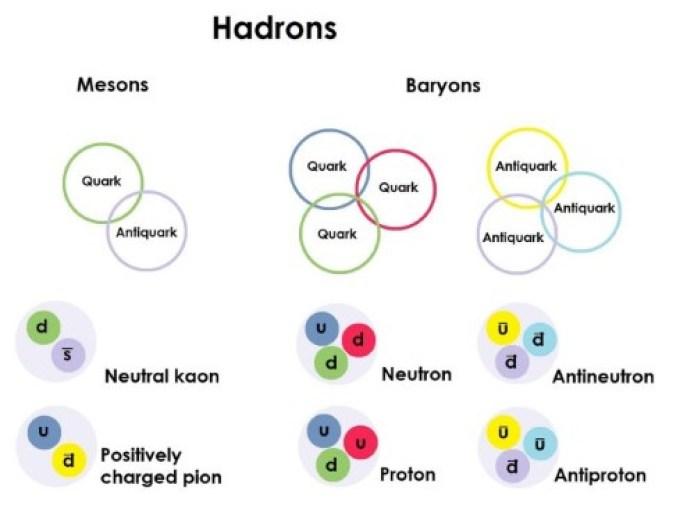 I diagrammi che mostrano gli adroni sono divisi in mesoni - fatti di un quark e un antiquark - e barioni, fatti di tre quark o tre antiquark. Kaons e pions sono mesoni, e neutroni e protoni sono barioni.