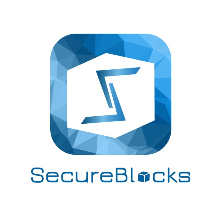SecureBlocks: The Blockchain startup