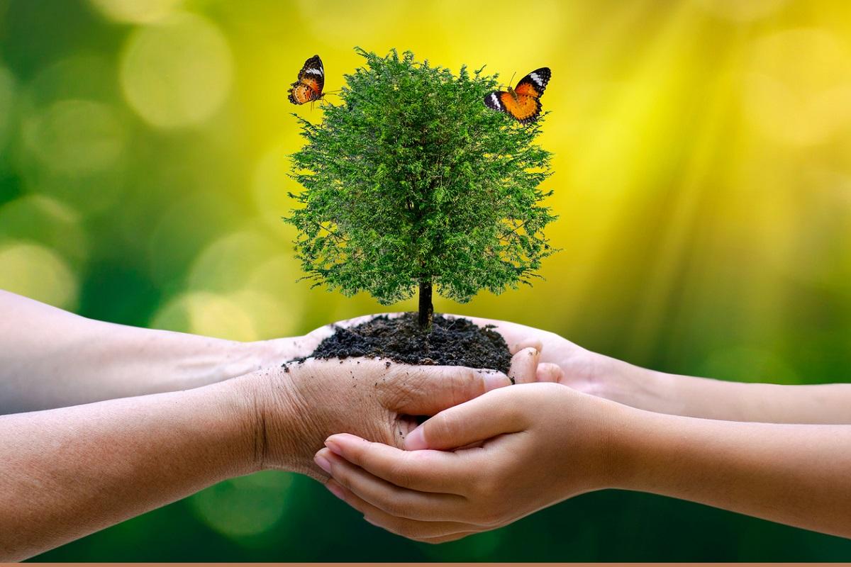 Simple Ways Of Saving Earth