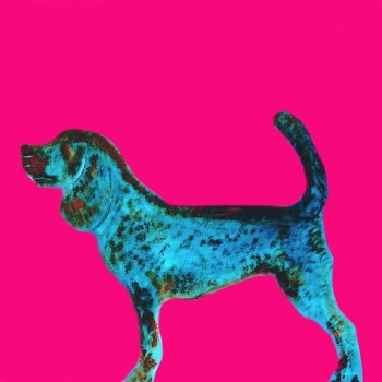 The Steel Rooms Colour Dog Card
