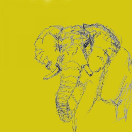 Elephant Card by Emma Roberts