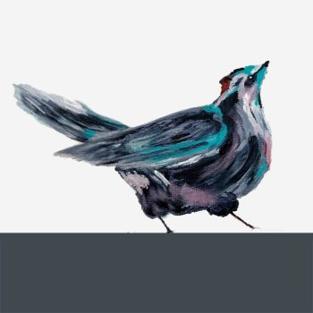 The Steel Rooms Colour Band Bird Card