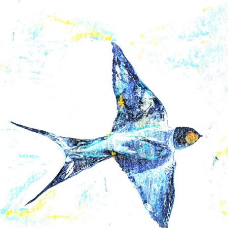 Colourful Sketch Swallow Card by Julie Steel for The Steel Rooms