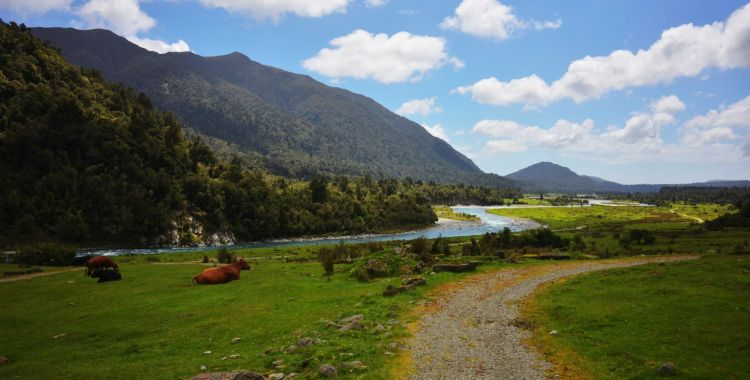 NZ Cycling (south island) - watch this space