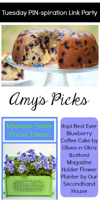 Amy's Picks | Best Ever Blueberry Coffee Cake/Magazine Holder Flower Planter | Tuesday PIN-spiration Link Party www.thestitchinmommy.com