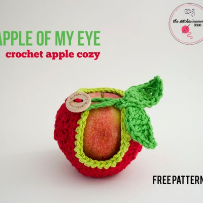 Apple of My Eye Apple Cozy – Free Pattern
