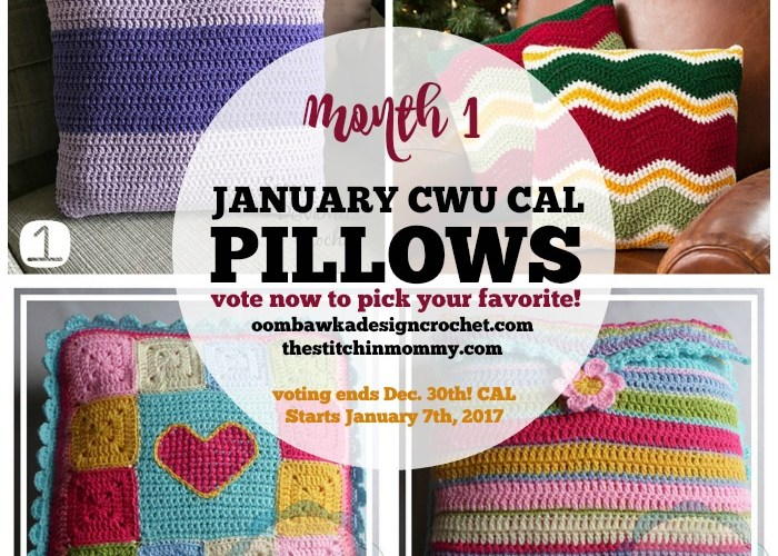 Choose Your Own 2017 CAL Adventure! Month 1 – January Pillows