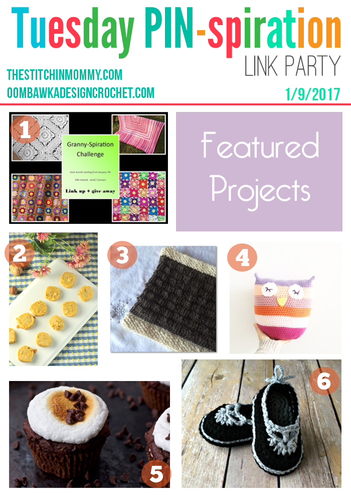 The NEW Tuesday PIN-spiration Link Party Week 19 (1/9/2017) - Rhondda and Amy's Favorite Projects | www.thestitchinmommy.com