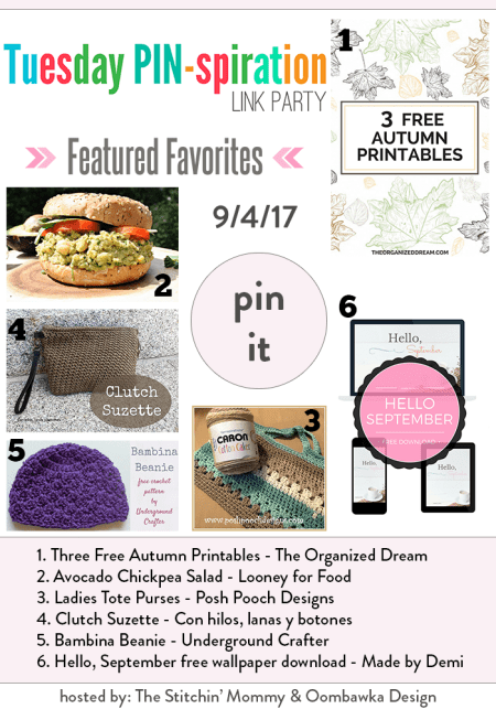 The NEW Tuesday PIN-spiration Link Party Week 53 (9/4/2017) - Rhondda and Amy's Favorite Projects | www.thestitchinmommy.com