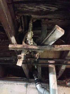 basement joists and how to find a fixer upper