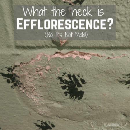 This is efflorescence, not mold! Here's everything you need to know about efflorescence.
