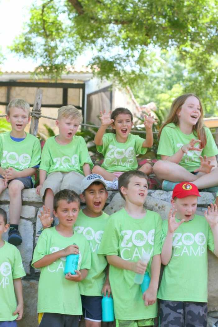 san antonio zoo camp