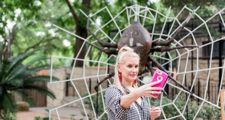 san antonio zoo spider