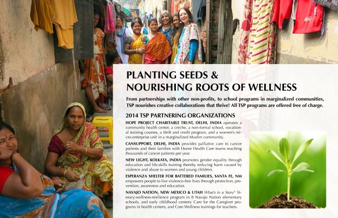 2014-TSP Annual Report-INTERACTIVE(1)_Page_4