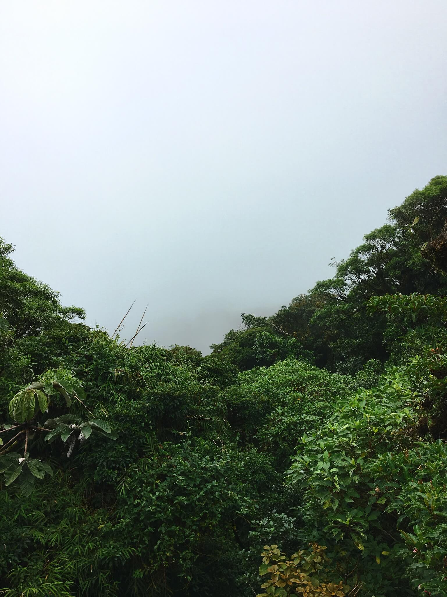 La tête dans les nuages à Santa Elena