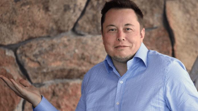 Elon Musk May Send David Einhorn A Box Of Short Shorts Thestreet