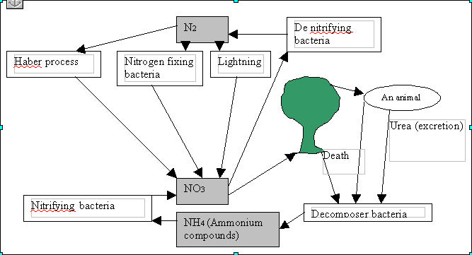 the carbon cycle diagram gcse emg wiring diagrams revision biology and nitrogen cycles student image jpg