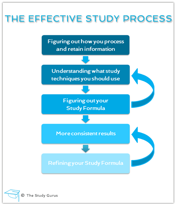 The Effective Study Process image
