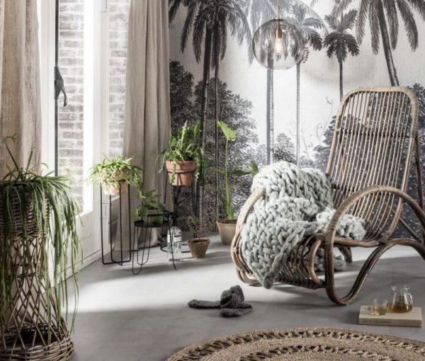 Woontrend 2018 5x palmbomen in het interieur  THESTYLEBOX