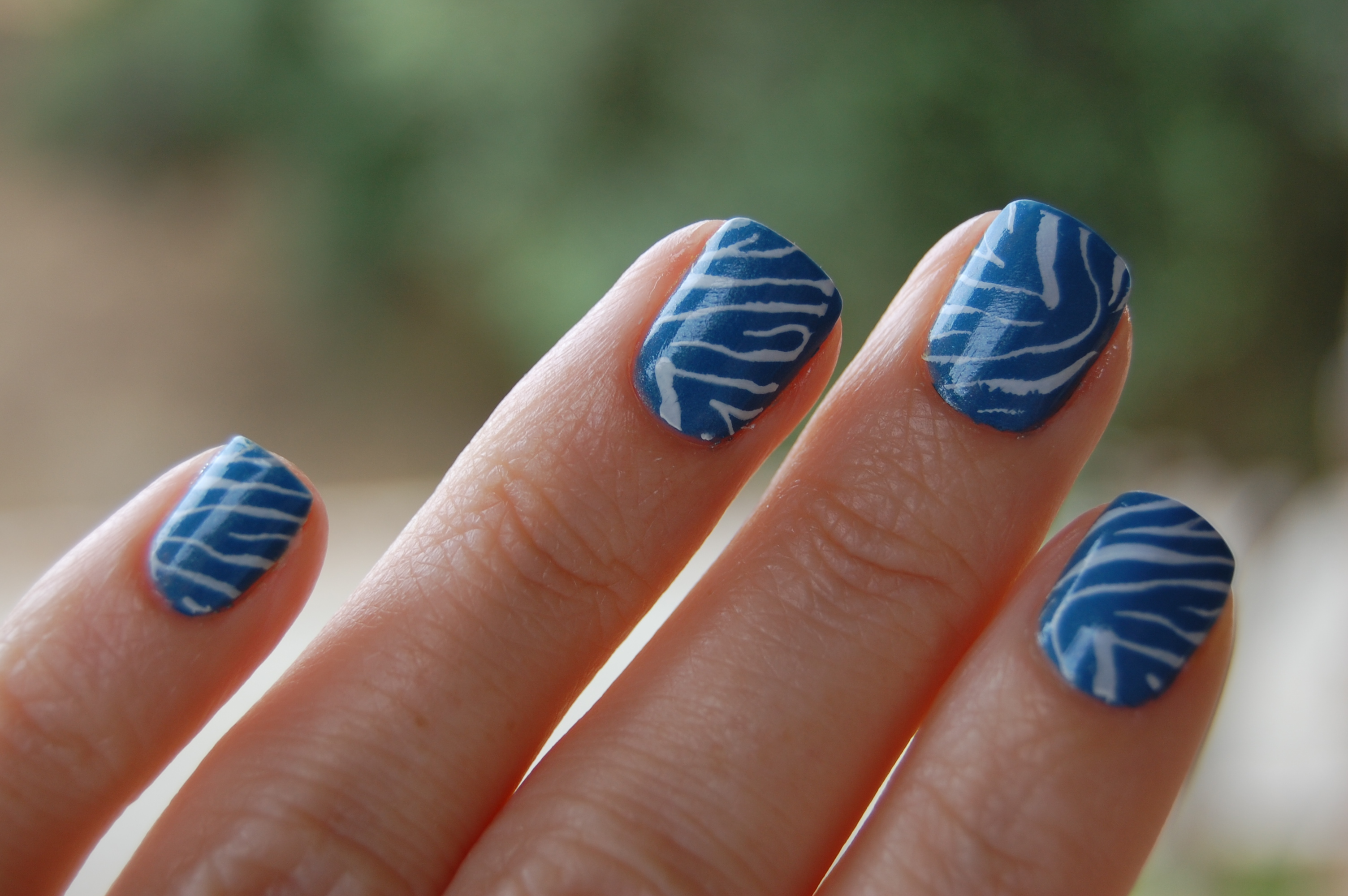the stylish housewife » Blog Archive show & tell: zebra mani - the